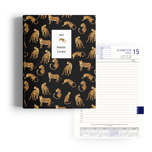 Picture of Big Cat Little Cat Diary A4